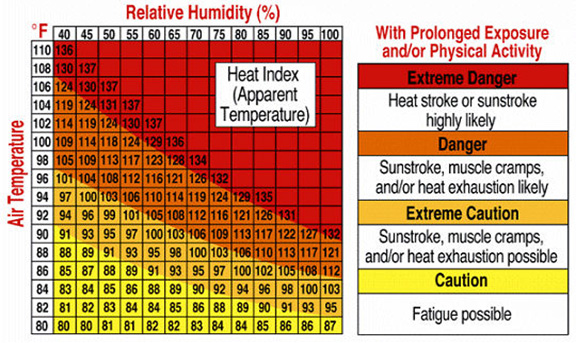 Recognize the dangers and signs of heat stroke, sunstroke